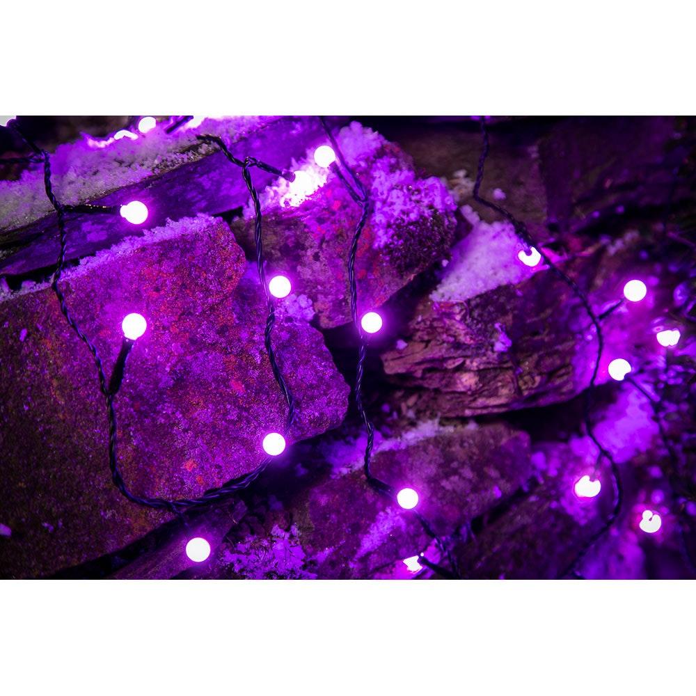 LED Globelichterkette runde Dioden 80 purpurfarbene Dioden IP44 8