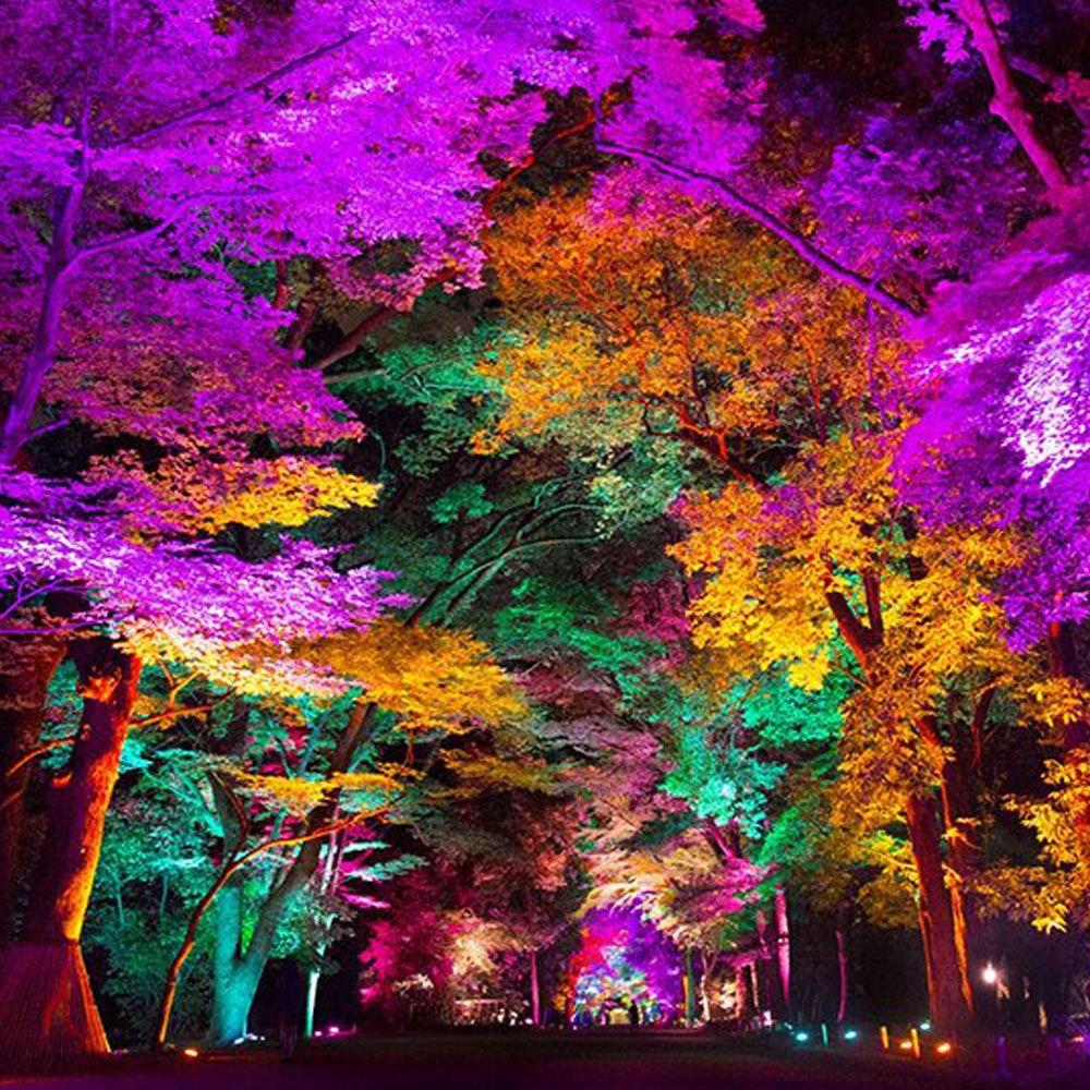 s.LUCE LED Spießstrahler iLight 6W RGB + CCT farbig & weiss 9