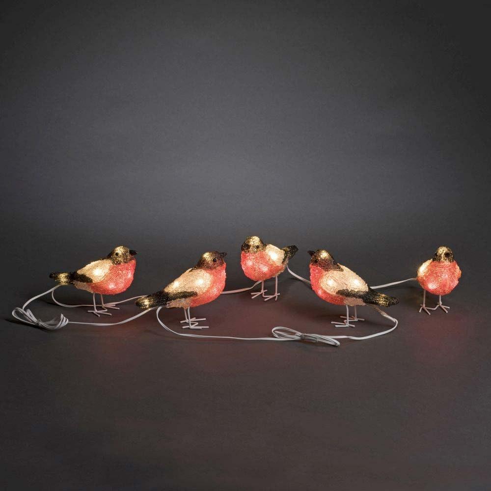 LED Acryl Rotkehlchen 5er-Set 40 kaltweiße Dioden IP44 2