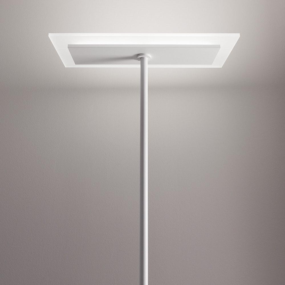 Linealight Dublight FL LED-Stehleuchte 2