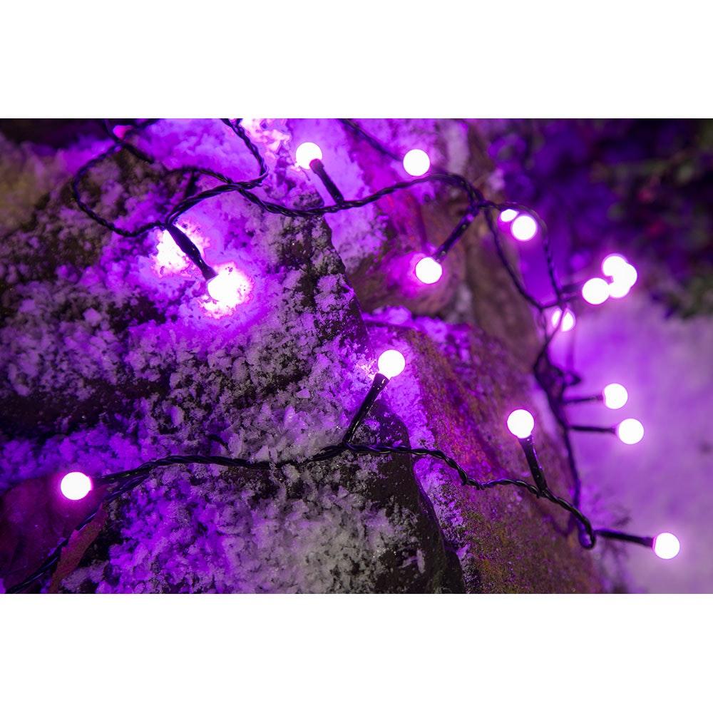 LED Globelichterkette runde Dioden 80 purpurfarbene Dioden IP44 9
