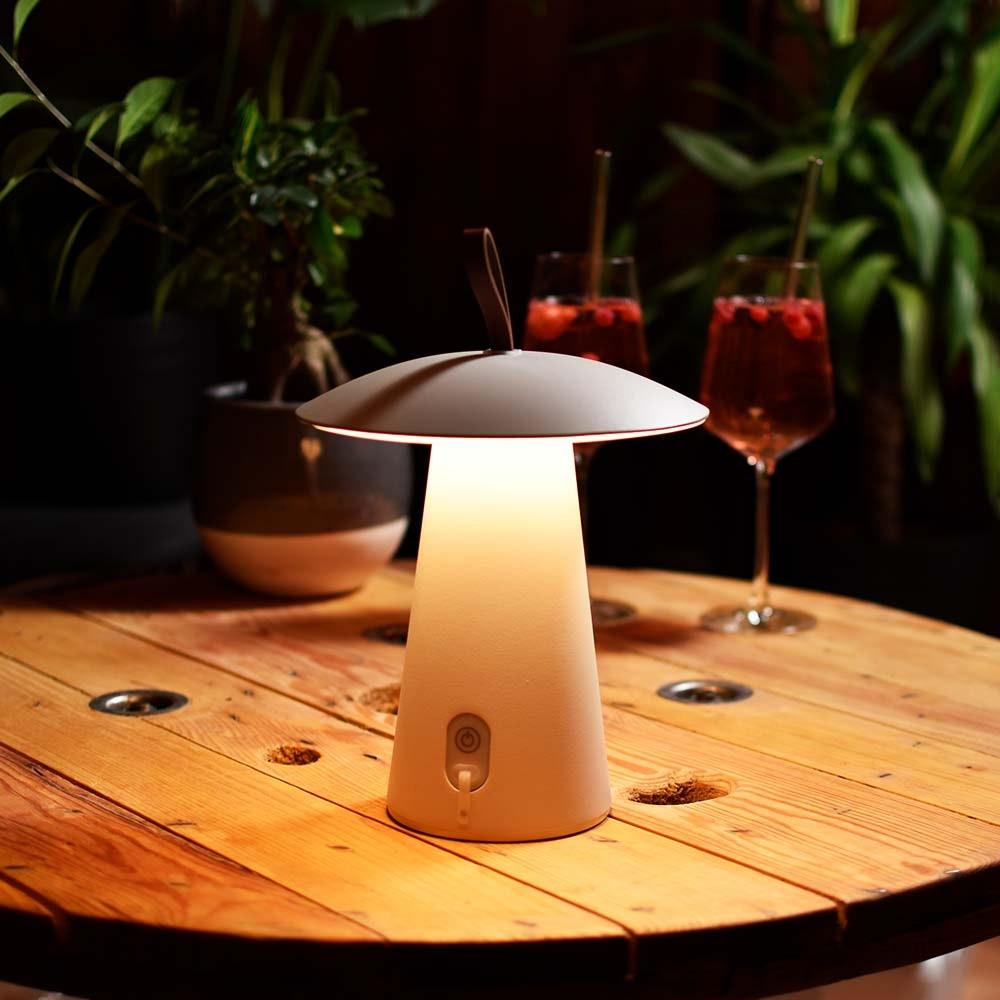 Licht-Trend LED-Akkulampe Homie für Innen & Außen IP54 10