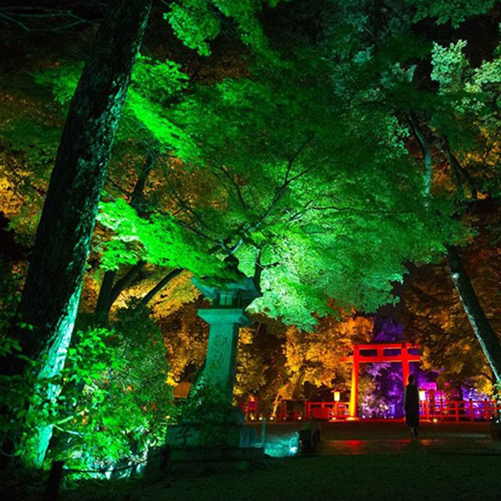 s.LUCE LED Spießstrahler iLight 6W RGB + CCT farbig & weiss 11