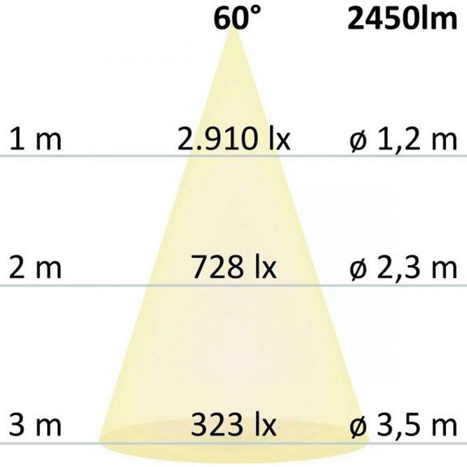 LED Downlight Reflektor Pro Ø 23,4cm 30W UGR 5