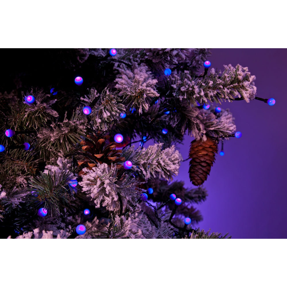 LED Globelichterkette runde Dioden 80 purpurfarbene Dioden IP44 2