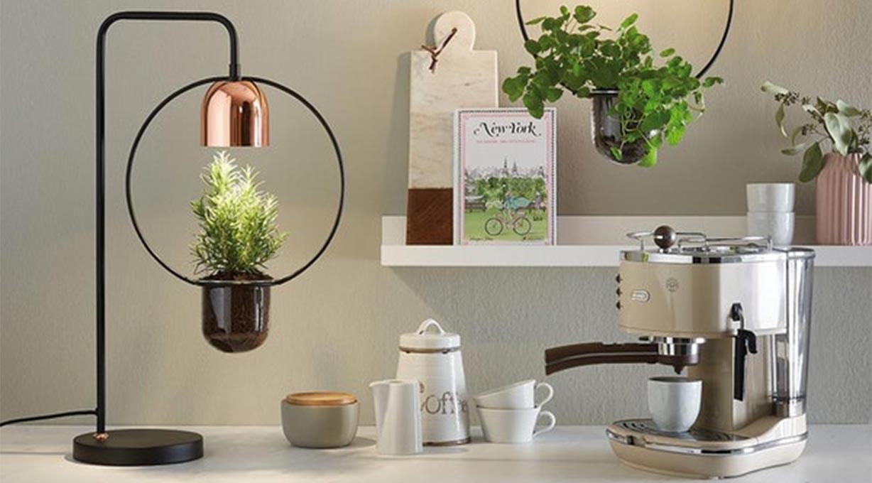 Stehlampe mit Pflanzen Küchenanrichte Kaffeemaschine