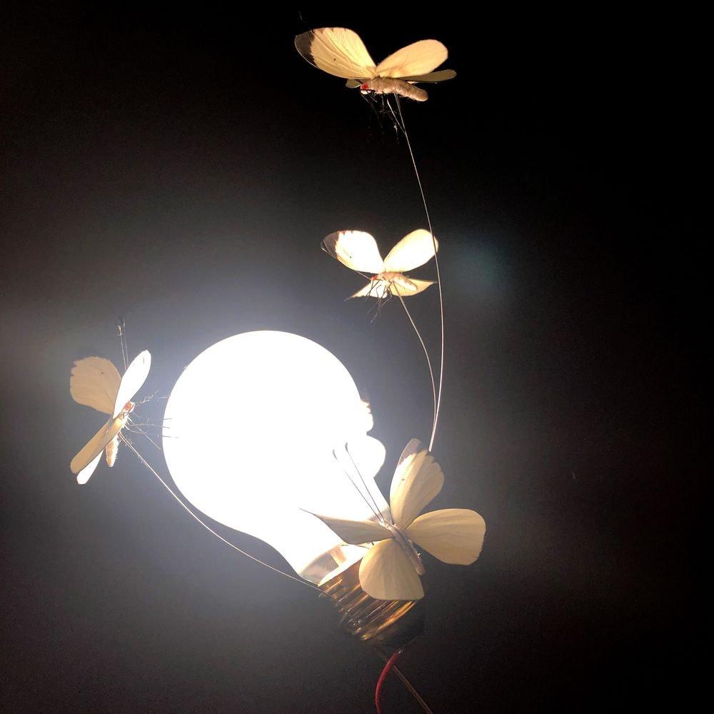 Ingo Maurer Tischlampe I Ricchi Poveri Five Butterflies Limitiert