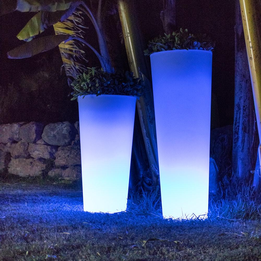 Licht-Trend Ficus leuchtender LED Blumentopf mit Akku und Fernbedienung 1