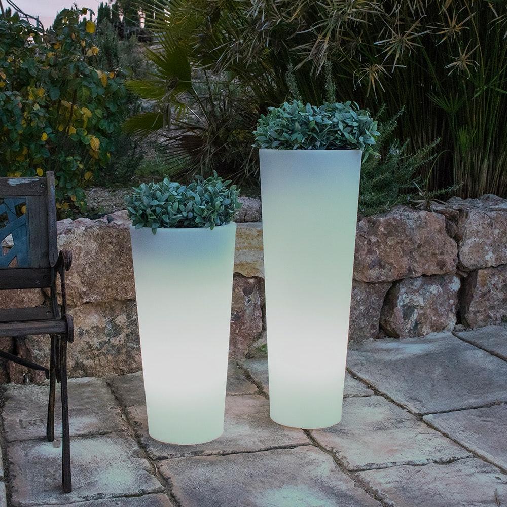 Licht-Trend Ficus leuchtender LED Blumentopf mit Akku und Fernbedienung 4