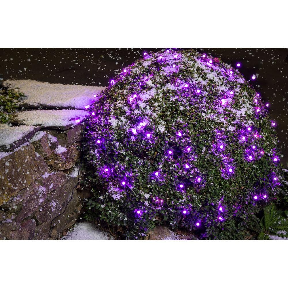 LED Globelichterkette runde Dioden 80 purpurfarbene Dioden IP44 6